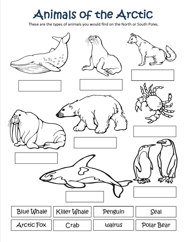 Free Coloring Pages Of Habitat